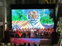 Торжественный прием к 5-летию Крымской весны